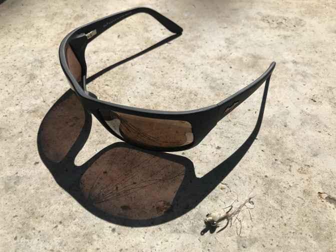 GlassesFly